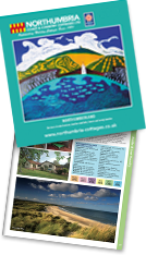 View our online brochure...